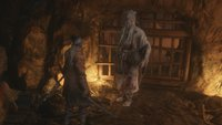 Sekiro: Dojun-Quest – Kompletter Walkthrough mit Video