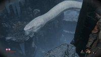 Sekiro: Riesenschlange töten - das müsst ihr machen