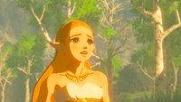 Zelda - Breath of the Wild 2 existiert, weil Nintendo zu viele DLC-Ideen hatte
