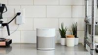 Bose Home Speaker 300 im Preisverfall: Kleiner WLAN-Lautsprecher verblüffend günstig