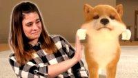 Little Friends: Dogs & Cats hat mir die Lust auf ein virtuelles Haustier verdorben