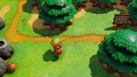 Link's Awakening & Cadence of Hyrule: Neue Zelda-Spiele erscheinen schon bald