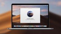 Public Beta von iOS, watchOS, iPadOS und macOS: Anmeldung und Installation, so gehts