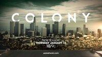 Colony Staffel 4: Gibt es eine Fortsetzung der Serie auf Netflix?