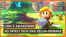 The Legend of Zelda: Link's Awakening...