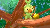Pokémon Schwert & Schild: Wir haben die Demo gespielt und so war es