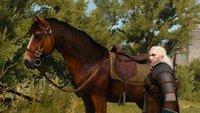 The Witcher Netflix-Serie: Erstes Bild von Plötze veröffentlicht