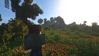 Minecraft: YouTuber beendet Spiel ohne einen einzigen Schritt