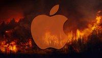 Tim Cook rettet den Regenwald: Apple gibt das, wovon es am meisten hat