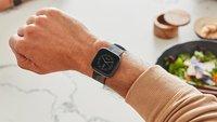 Fitbit Versa 2: Bedienungsanleitung als PDF-Download (Deutsch)