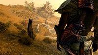 Skyrim-Spieler sorgt dafür, dass er mit seinem verstorbenen Hund wieder spielen kann