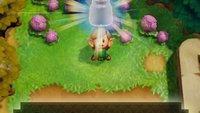 Zelda - Link's Awakening: Flaschen finden und Feen fangen