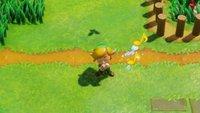 Zelda - Link's Awakening: Alle Lieder für die Ocarina - Fundorte und Verwendung