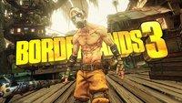 Borderlands 3: Gearbox Chef freut sich über viele Spieler - die haben allerdings mit Problemen zu kämpfen