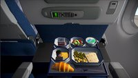 In diesem Flugsimulator bist du Passagier – pure Langeweile garantiert