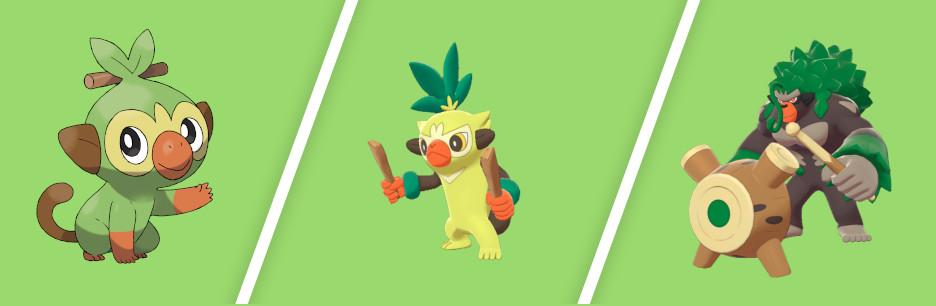 Pokemon Schwert Starter Entwicklungen