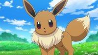 Pokémon Schwert & Schild: Evoli entwickeln - Alle Voraussetzungen