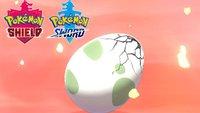 Pokémon Schwert & Schild: Wie ihr Eier viel schneller ausbrütet