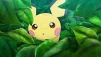 Pokémon: Endlich wissen wir, wie Pikachu gelebt hat, bevor es zu Ash kam