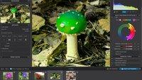 DxO PhotoLab 3.2: Das farbige Geheimnis der Fotobearbeitung