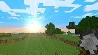 50 Prozent aller Minecraft Java-Spieler besuchten einen bestimmten Server