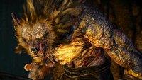 The Witcher 3: Im Wolfspelz – so befreit ihr Morkvarg vom Fluch