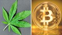 Durch dummen Zufall: Drogendealer verliert Bitcoin-Millionen