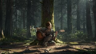 PS4: Gratis The Last of Us 2-Theme sichern - so geht's