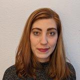 Lisa Fleischer