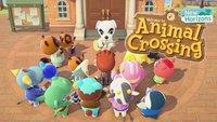 Animal Crossing - New Horizons: Insel-Image für K.K. verbessern - so geht's