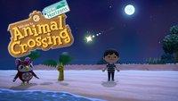 Animal Crossing - New Horizons: Sternschnuppen farmen und Sternensplitter bekommen