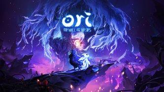 Ori and the Will of the Wisps im Test: Eine märchenhafte Fortsetzung