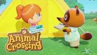 Animal Crossing - New Horizons: Mehrere Spielstände erstellen