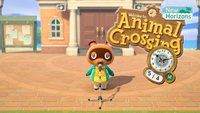 Animal Crossing - New Horizons: Zeit umstellen