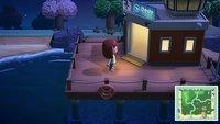 Animal Crossing - New Horizons: Dodo-Codes nutzen und Freunde besuchen