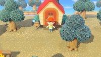 Animal Crossing - New Horizons: Haus und Gebäude verschieben