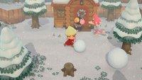 Animal Crossing - New Horizons: Neue Bewohner bekommen und entfernen