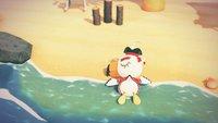Animal Crossing – New Horizons: Gulliver und Piraten-Gullivarrr finden und Quest abschließen