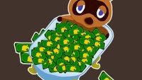 In Animal Crossing: New Horizons ist eine ganz neue Währung entstanden