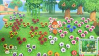 Animal Crossing - New Horizons: Blumen kreuzen und züchten