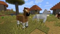 Minecraft: Spieler verließ Server und ließ sein Pferd mit super süßer Nachricht zurück