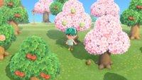 Animal Crossing - New Horizons: Häschentag - Glückseier und Bastelanleitungen bekommen