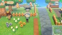 Animal Crossing: New Horizons - Spieler bietet faulen Gärtnern seinen Dienst an