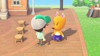 Animal Crossing - New Horizons: Kunstgalerie freischalten und Reiners Schatzkutter finden