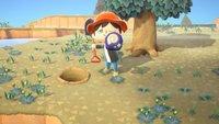 Animal Crossing - New Horizons: Alle Fossilien - Liste und Verkaufspreise