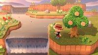 Animal Crossing - New Horizons: Alle zufälligen Insel-Typen von Überraschungstouren