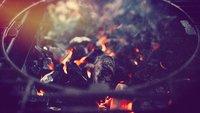 Kohlegrill vs. Gas und Elektro: Es muss rauchen, Baby!