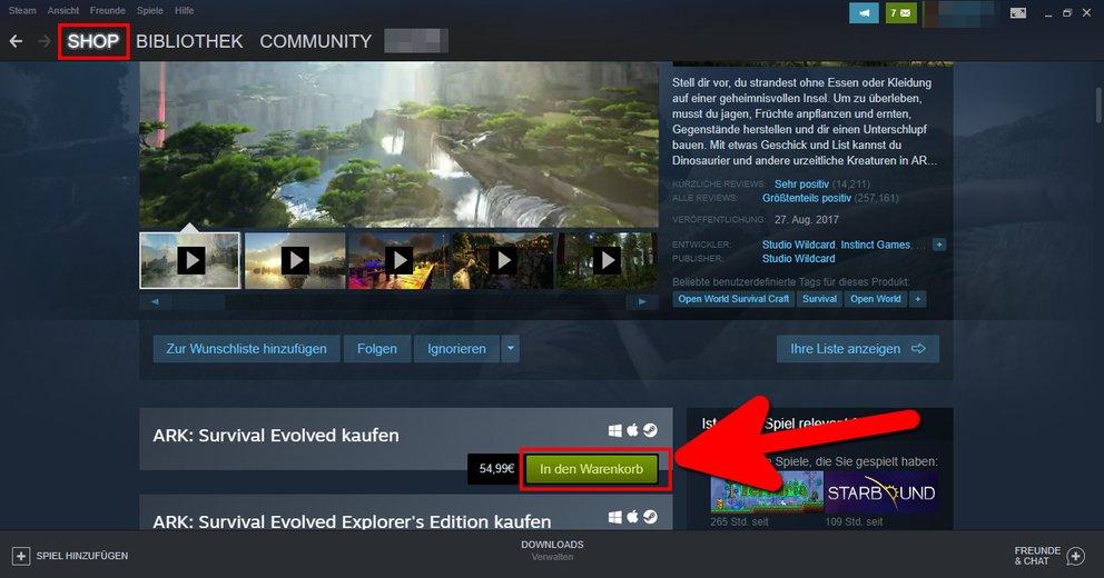 So kauft ihr ein Steam-Spiel. Bild: GIGA