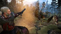 The Witcher 3: Dank Schusswaffen-Mod ist Geralt nun bewaffnet bis an die Zähne
