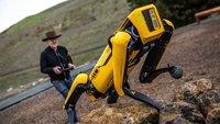 Teuer wie ein Porsche: Diesen Roboter-Hund kannst du dir nicht leisten